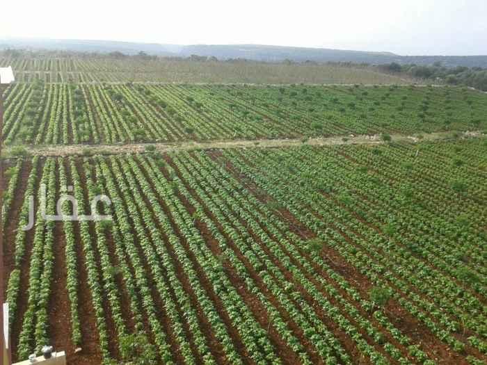 مزرعة للبيع فى شارع مبارك الكبير ، حي قبلة ، مدينة الكويت 2