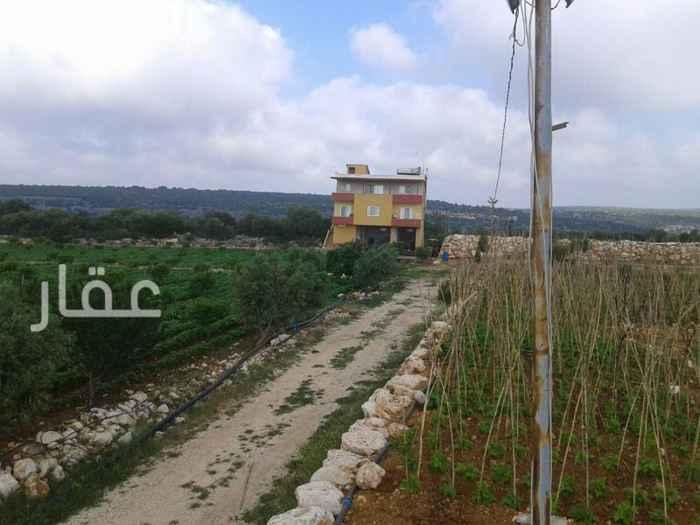 مزرعة للبيع فى شارع مبارك الكبير ، حي قبلة ، مدينة الكويت 41