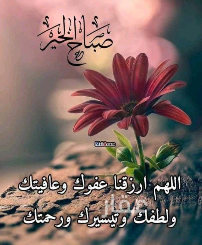 جاخور للبيع فى حي قبلة ، مدينة الكويت 0