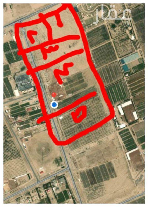 مزرعة للبيع فى شارع عبدالله المبارك ، حي قبلة ، مدينة الكويت 0