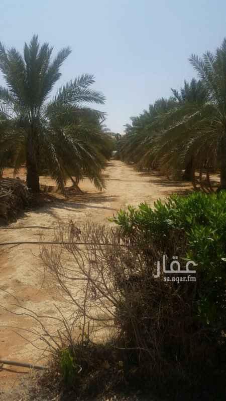استراحة للبيع فى القيروان, الرياض صورة 4