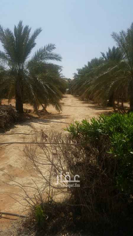 استراحة للبيع فى طريق الثمامة, الرمال, الرياض صورة 4