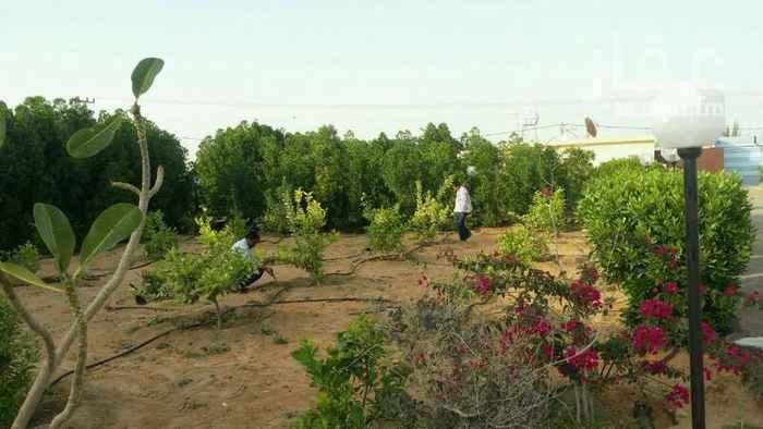 مزرعة للبيع فى طريق الملك فهد ، الخرج 18