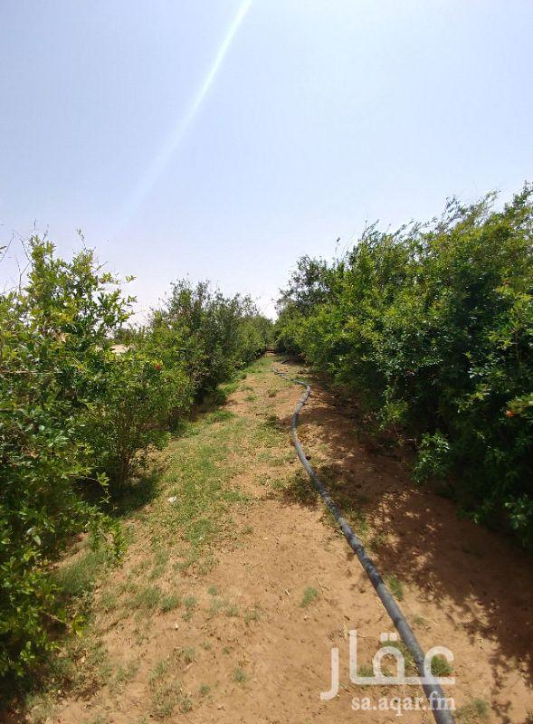 مزرعة للبيع فى المملكة العربية السعودية 4