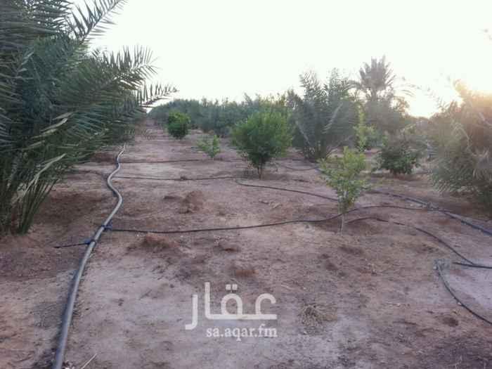 مزرعة للبيع فى المملكة العربية السعودية 41