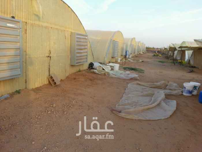 مزرعة للبيع فى المملكة العربية السعودية 8