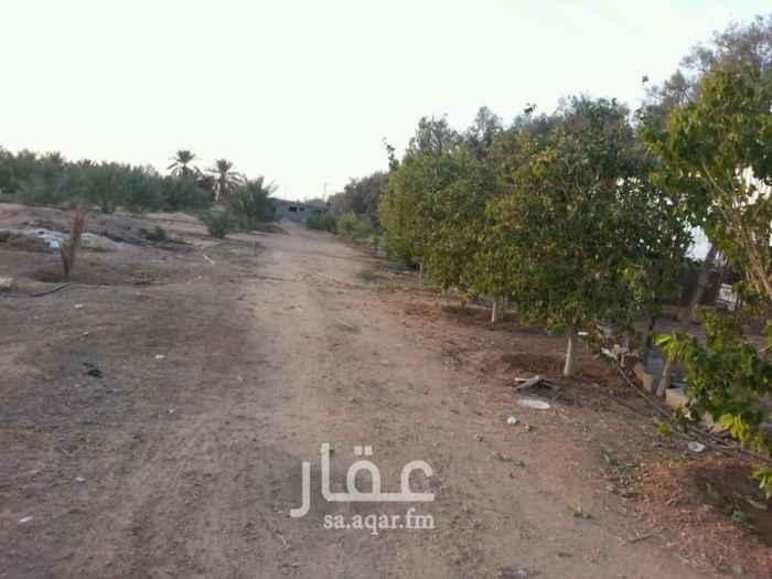 مزرعة للبيع فى المملكة العربية السعودية 14