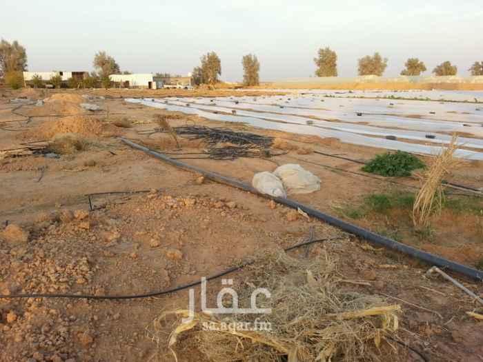 مزرعة للبيع فى المملكة العربية السعودية 161