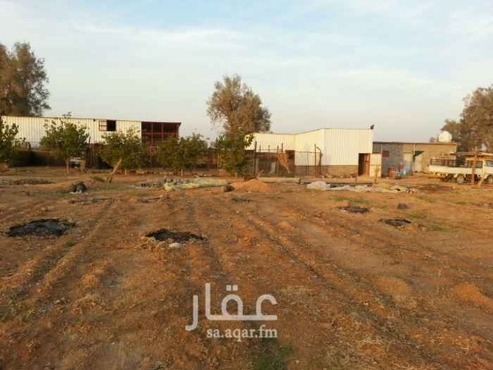 مزرعة للبيع فى المملكة العربية السعودية 18