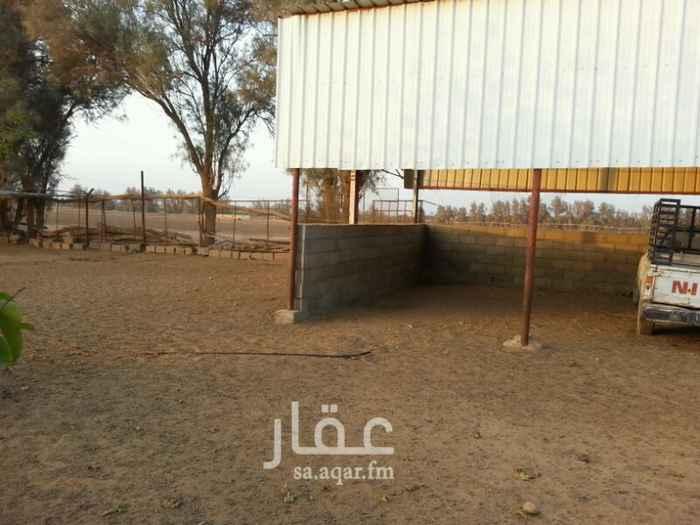 مزرعة للبيع فى المملكة العربية السعودية 181