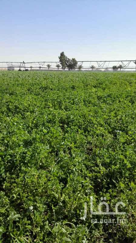 مزرعة للبيع فى المملكة العربية السعودية صورة 5
