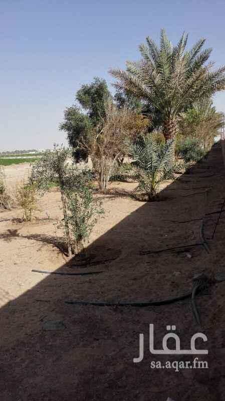 مزرعة للبيع فى المملكة العربية السعودية صورة 6