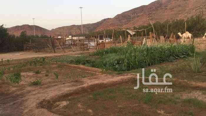 مزرعة للبيع فى المملكة العربية السعودية 21