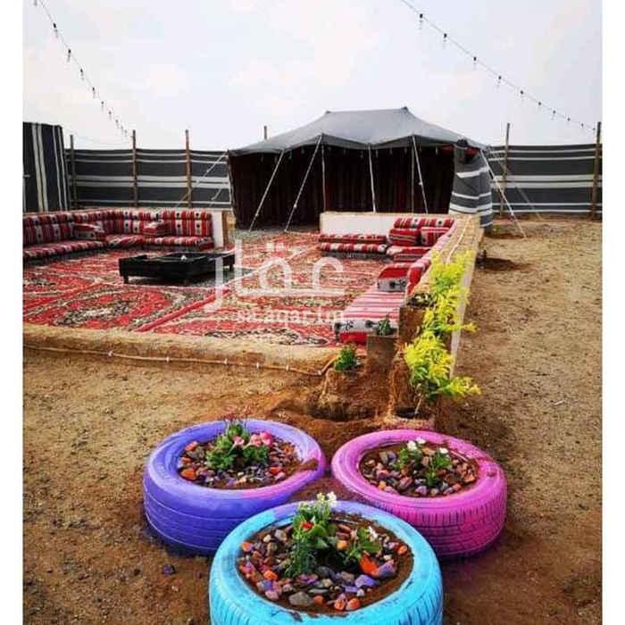 1393756 مخيم نجمة ليالي الشتاء. يتكون من ٣ اقسام