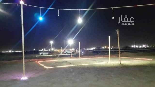 1481127 مخيم الفرسان للشباب للايجار اليومي خلال شهر رمضان 200ريال