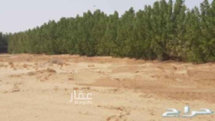 1650901 ارض زراعية في خليص للايجار خاص للشركات  قريبة من المخطط وتبعد عن طريق مكة المكرمة المدينة المنورة القديم ١.٥ ك محاطة كاملة باشجار البزرومي بها بئر ارتوازية وكهرباء وطريق مسفلت .