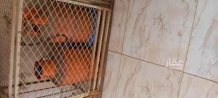 1802537 شقه الدور الأول عداد كهرباء مستقل حي هادي سكني جميع الخدمات قريبه جدا ٤غرف واصله ودورتين مياه ومطبخ راكب ويوجد فلتر ماء  للتواصل 0504551709