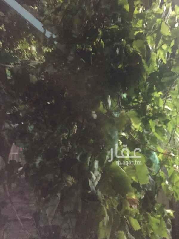 1192219 يوجد بالاستراحة اشجار فواكه مثمرة ونخيل مثمره عددها حوالي ١٥٠ شجره ونخله المياه متوفرة وعذبه  التشطيب من النوع الممتاز وغرفة عامل مستقلة