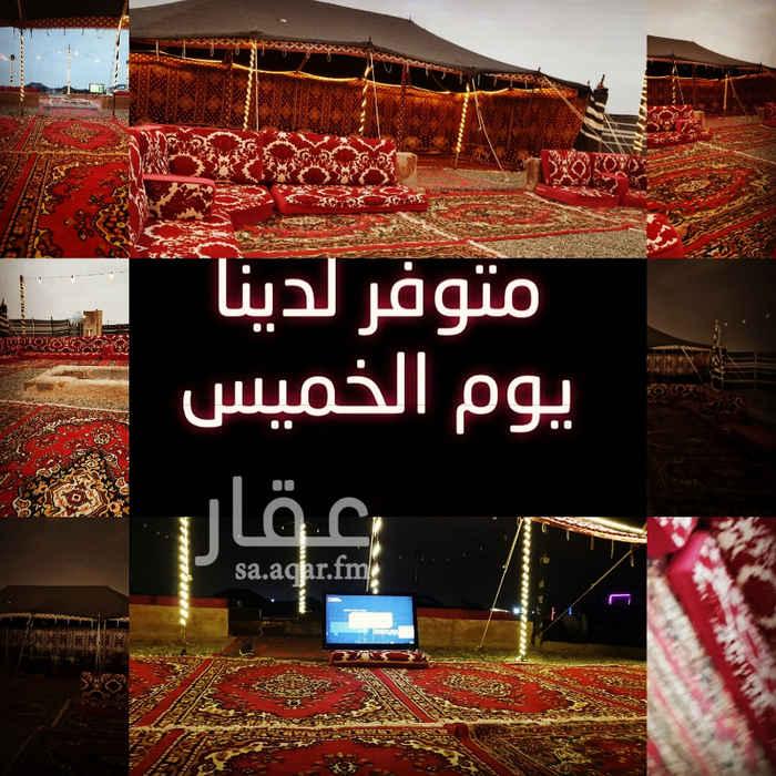 1354890 مخيم نجمة ليالي الشتاء كل ماتطلبه اجتهدنا لتوفيره جدة طريق عابر القارات 0509697977 موبايلي 0533809666