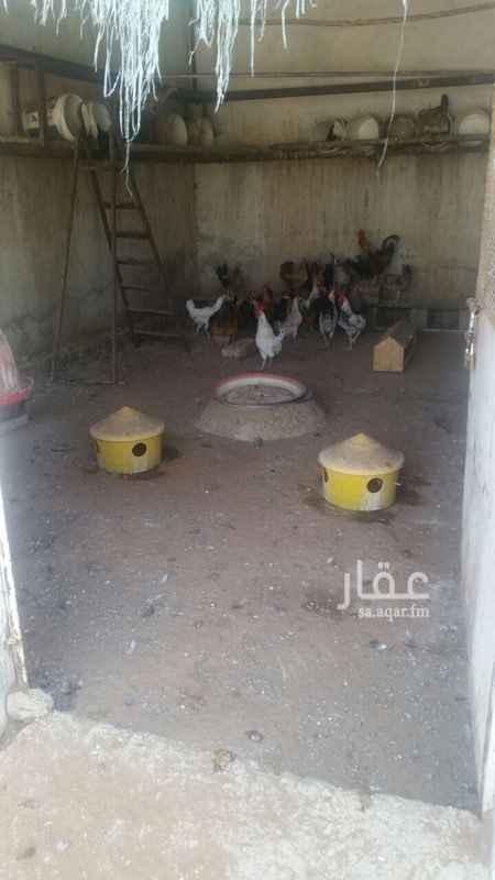 استراحة للبيع فى القيروان, الرياض صورة 2