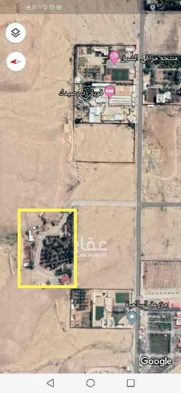 1580756 مزرعة بالعماريه مساحتها 14000 م  فيها 3 ابار ونخيل وحمضيات ومباني