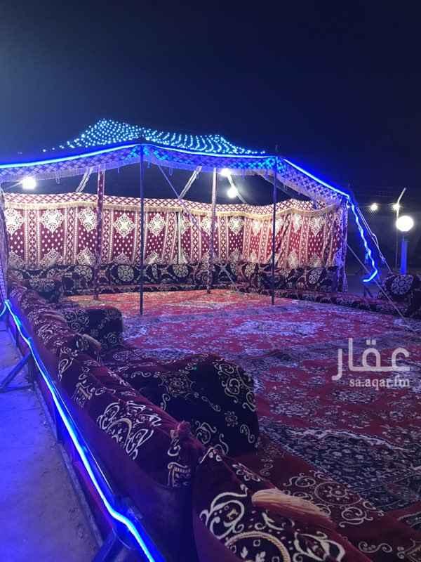 1329093 مخيمات ابو راكان ذهبان -عسفان - الحمدانية- ابراق الرغامة