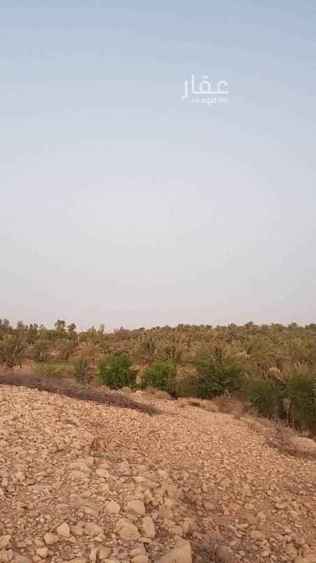 1690510 للبيع مزرعة بالعيينة  مساحة الارض ٢٧٠٨٧٥م٢. مساحة الحمى ١٨٦٣٠٠م٢.  عدد النخل حوالي ٢٠٠ نخله منوع واشجار  عدد الأبار ٢ ثلاثه عدد كهرب الماء والهاتف واصل المزرعه.  السوم 30 مليون   للتواصل ابو ابراهيم  0544331148