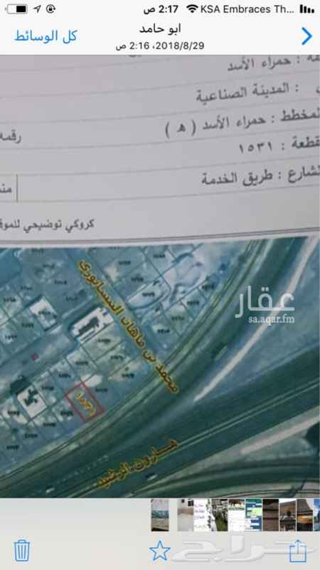 1300222 ارض مسطحه للبيع في مخطط حمراء الاسد تجاريه على شارع مية