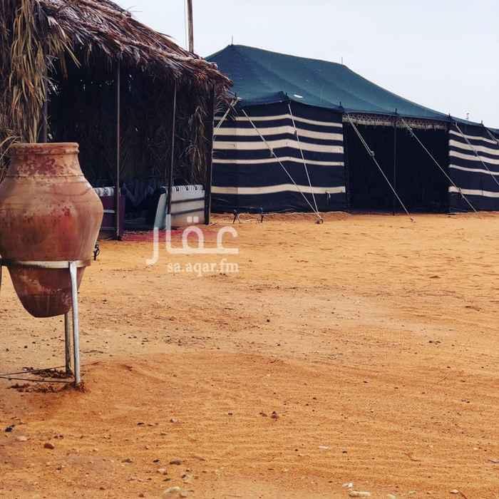 1286136 الثمامة  (القسم الاول)   دكه خارجيه   بيت شعر ١١*٦         خيمة صيوان كنب ١٠*ه. خيمة كنب ٦*٤.        عريش كنب ٦*٥. ألعاب اطفال.          مع  نطيطه (مطبخ ٤*٣) دورة مياة افرنجي +  دورة مياه عربي + مغاسل  (القسم الثاني)  بيت شعر ١١*٦            خيمة مقلط ٨*٥ خيمة كنب ٦*٤               جلسة عريش ارضيه  دكة خارجيه                    مطبخ  ملعب طائرة                    برميل مندي دورة مياة + مغاسل  بروجكتر  لدينا beoutQ  الموقع بخرائط قوقل ماب : مخيم ليالي الصحراء للتواصل واتساب : 0544448016