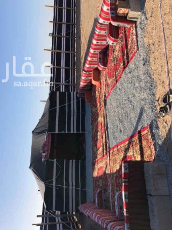 1385504 مخيم للايجار جنوب جدة بعد كبري السنابل