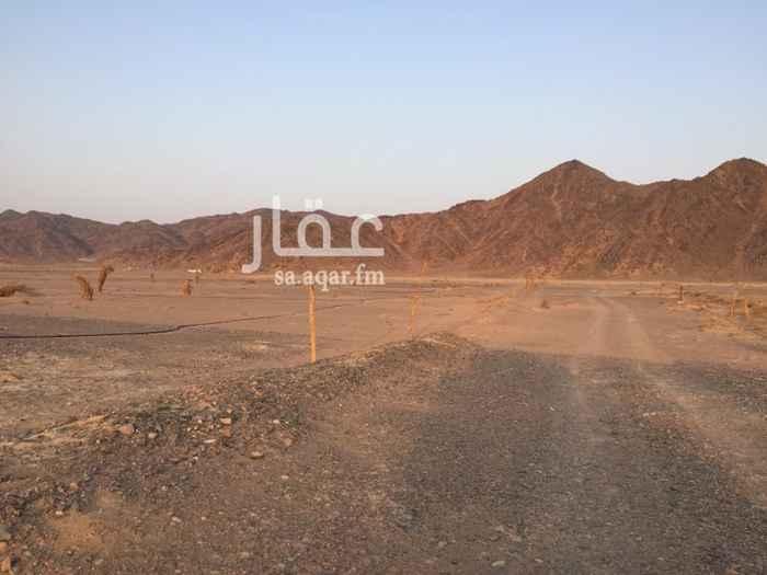 703416 ارض زراعية تجارية بصك       مخطط ل ملل  على طريق تبوك السريع الجديد  النازل للمدينة  مساحة 30 الف م2 واجهتين