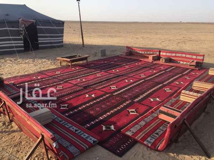 1308878 مخيم شبابي خيمة جاسة خارجية دورة مياه حفرة مندي مغسلة مناطق مفتوحة اجار خيل ١٠٠ريال للساعة