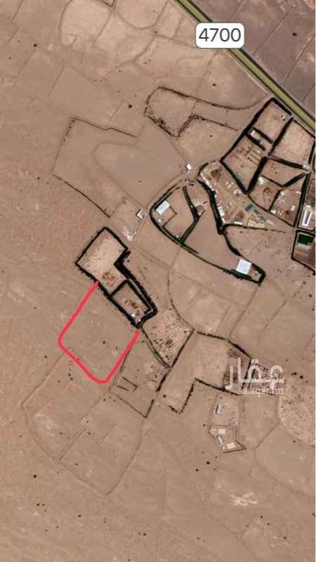 1463614 مزرعه غير مزروعه بوثيقه وجميع مزارع جيرانا مدخلين الكهرباء وعلى بعد ١٥ الى ٣٠ م الماء .