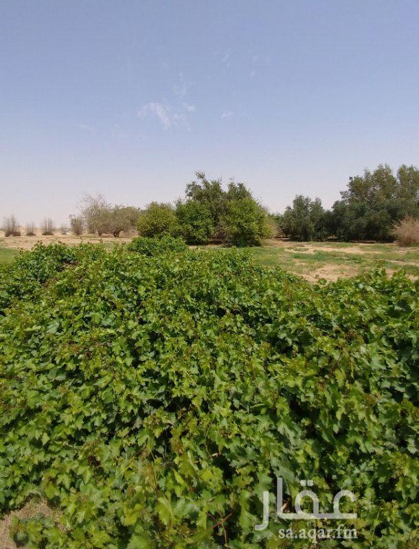 مزرعة للبيع فى المملكة العربية السعودية صورة 3