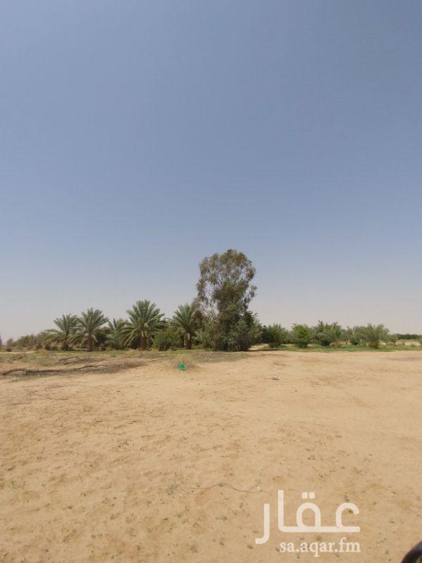 مزرعة للبيع فى المملكة العربية السعودية صورة 7