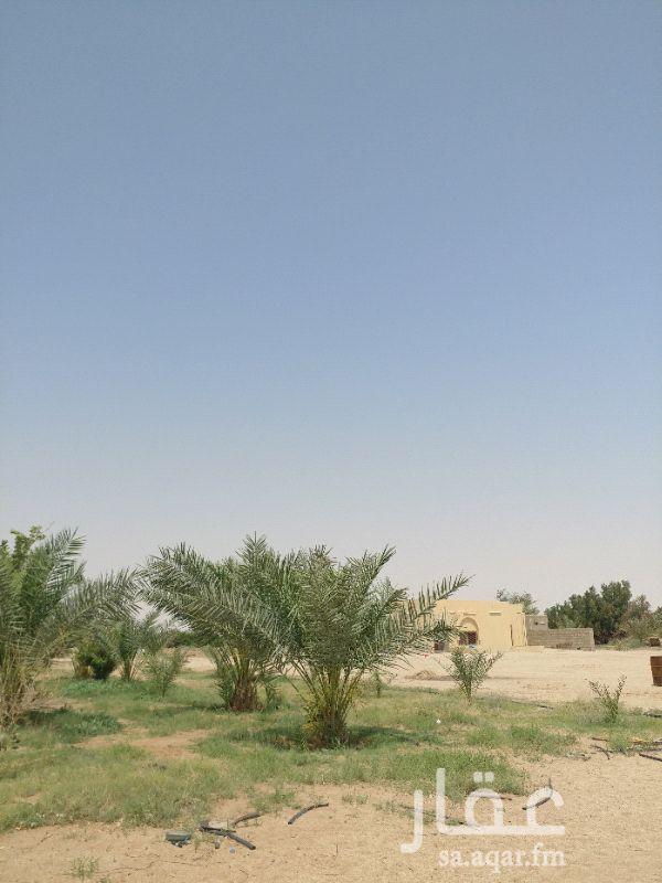 مزرعة للبيع فى المملكة العربية السعودية صورة 8