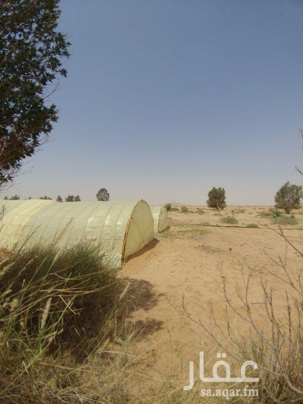 مزرعة للبيع فى المملكة العربية السعودية صورة 10