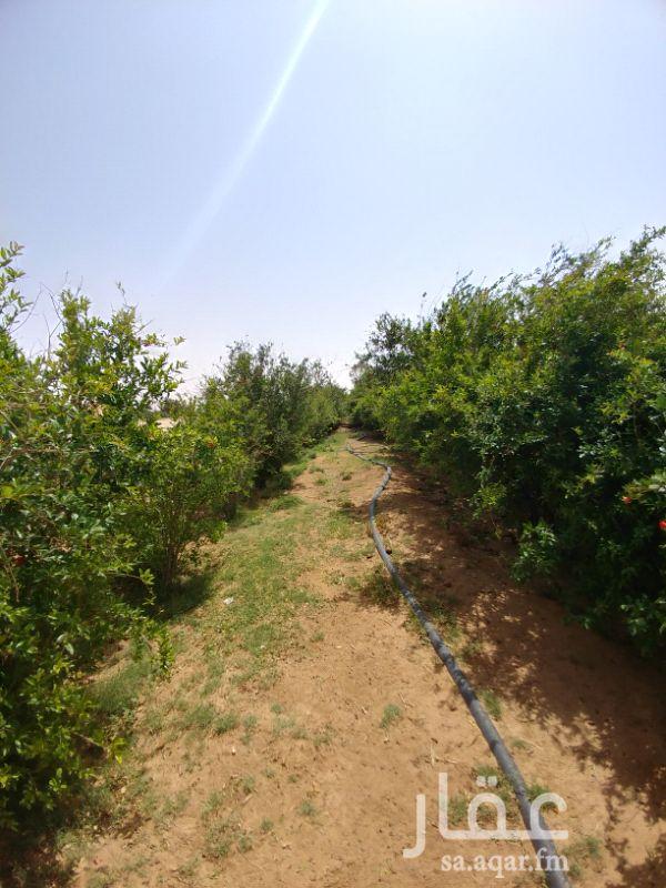 مزرعة للبيع فى المملكة العربية السعودية صورة 11