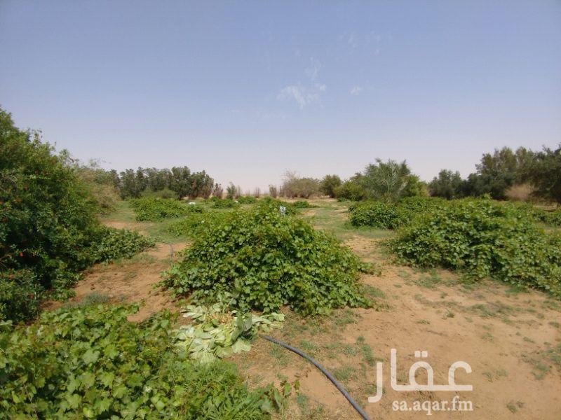مزرعة للبيع فى المملكة العربية السعودية صورة 15