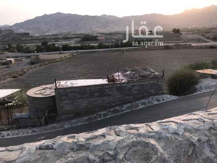 1747856 مزرعه كبيره يوجد بها استراحتين ومسبح بصك شرعي على الشارع العام ١٢٠ متر كذلك لها مسايل خارج الصك الشارع المؤدي الى الدرب من رجال المع