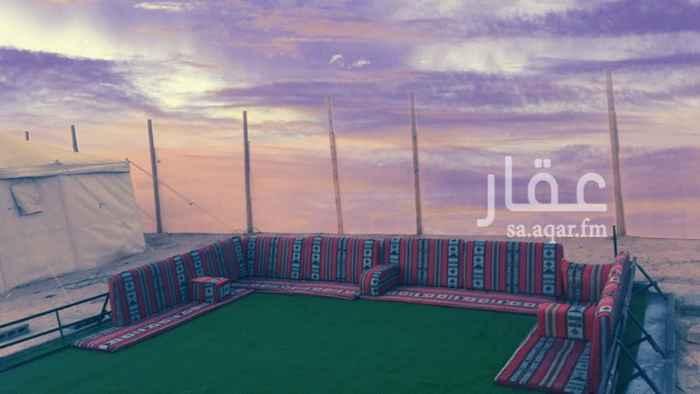 729985 مخيم الربيع  للايجار اليومي    يوجد فالمخيم دبابات   العاب اطفال   السعر الايجار حسب التفاوض