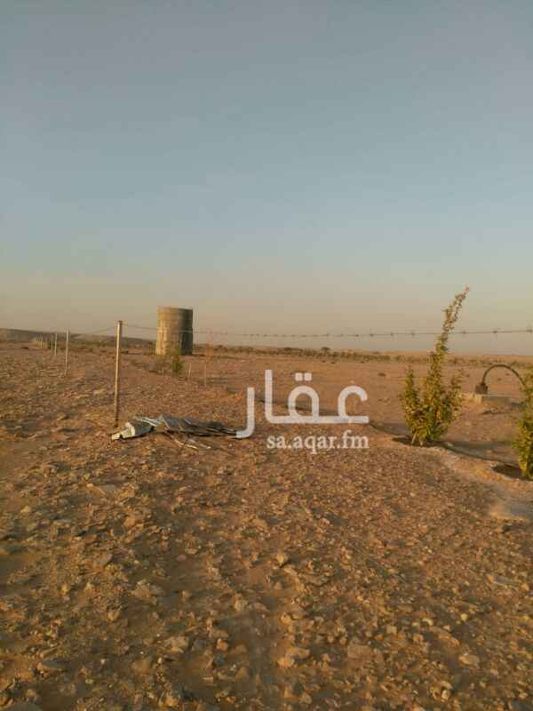 1123550 مزرعه في الخرج الصيعان بها نخل وبير مساحتها ٦٠الف متر علي السوم