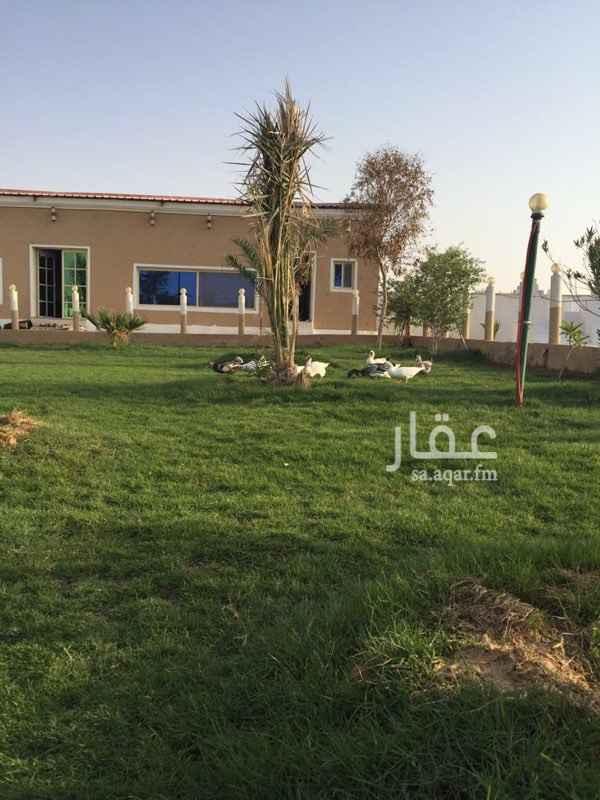 1201238 مزرعه للبيع في صلاصل