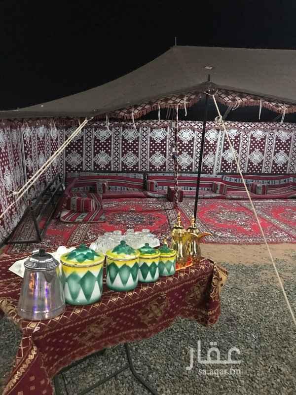 832244 مخيم البدر للايجار اليومي / المخيم متكامل بقسمين رجال ونساء