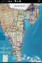 1751390 للبيع   نص ارض   بمخطط الأصداف   أسفلت إنارة كهرباء ماي صرف صحي     مساحه 500 متر   شارع 20 جنوب   السعر 310 ألف    00966580611290