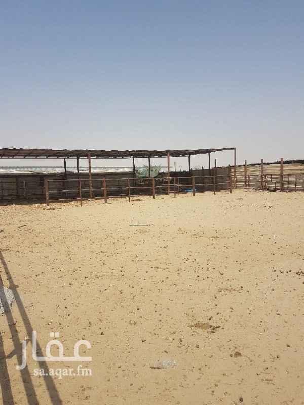 أرض للإيجار فى المملكة العربية السعودية صورة 4