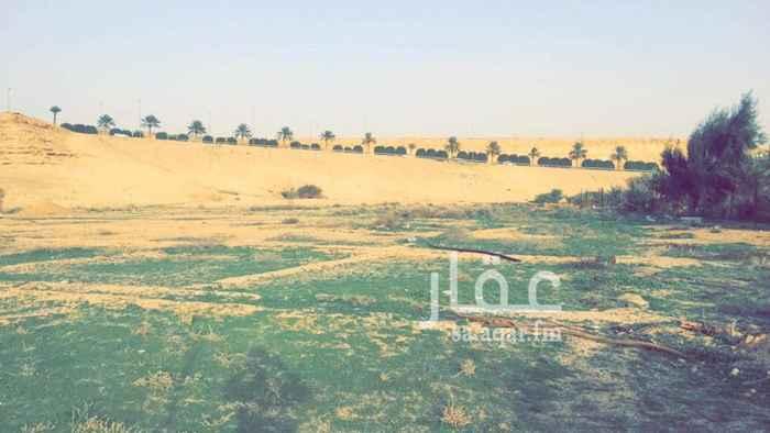 1524154 ارض زراعية بصك شرعي للبيع محافظة العيينه تبعد عن الدرعية 15 دقيقة المساحة : 8892م يوجد بها بئر إرتواز - عداد كهرب السوم : 170 للمتر