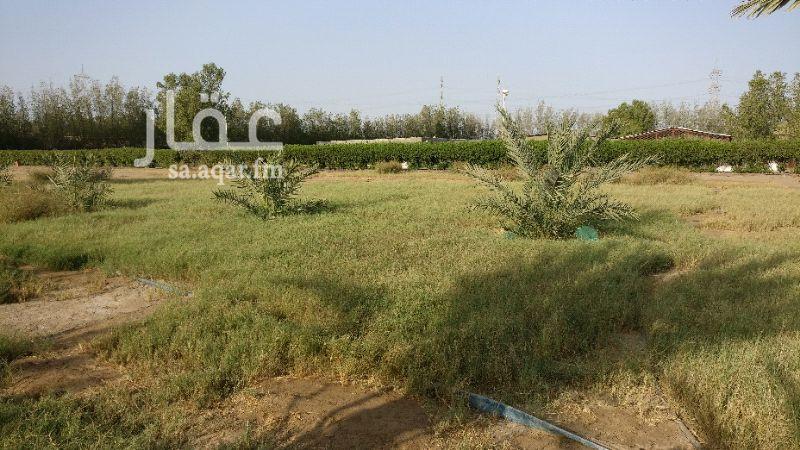 755755 مزرعه للبيع بصك شرعي مميز يوجد بها غرف للسكن وغرف عمال للتواصل واتس 0504666958