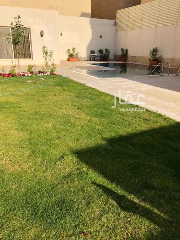 1536303 استراحة في مربع 9 وسط حي سكني للايجار اليومي  قسم واحد فقط يوجد مسبح راقي ( اوفر فلو ) يصل عمقه الى 2.5 متر  يوجد حديقة و مسطحات خضراء