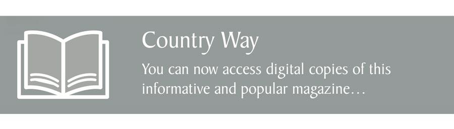 county way